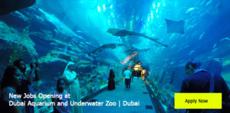 New-Jobs-Opening-at-Dubai-Aquarium-and-Underwater-Zoo