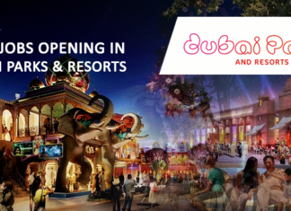 Jobs Opening In Dubai Parks And Resorts