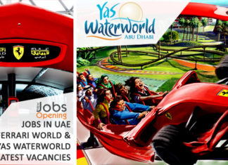 jobs-in-uae-ferrari-world-and-yas-waterworld-latest-vacancies | New Jobs opening is a complete job portal for jobs in all countries especially in gulf & middle east. Find latest jobs from all reputed companies & apply for online jobs in middle east.